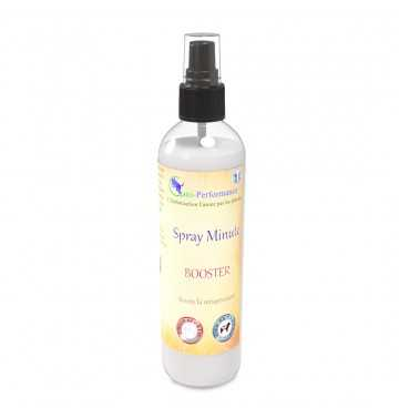 Spray minute booster 250ml